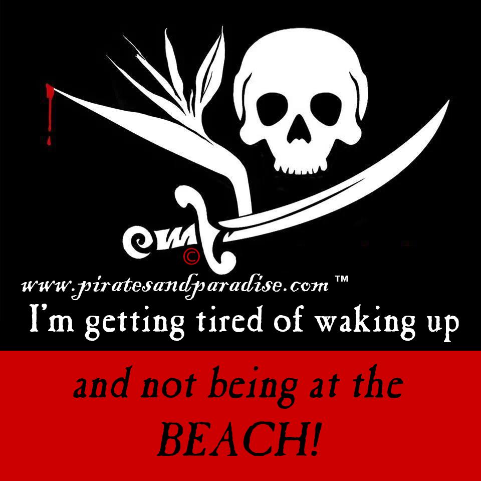 P&P meme beach